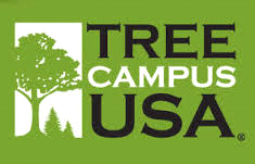Tree Campus Banner