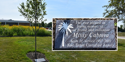 Triton College Memorializes Longtime Employee with Campus Tree Planting